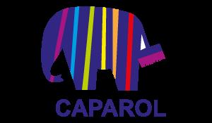 Caparol - Bakırtaş İnşaat İş Ortağı