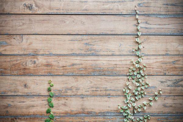 bahçe-zemin-ve-peyzaj-uygulamaları2